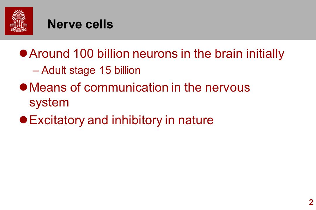 Around 100 billion neurons in the brain initially