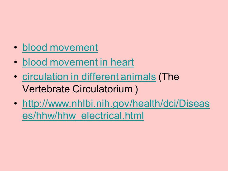 blood movement blood movement in heart. circulation in different animals (The Vertebrate Circulatorium )