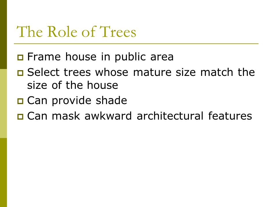 The Role of Trees Frame house in public area
