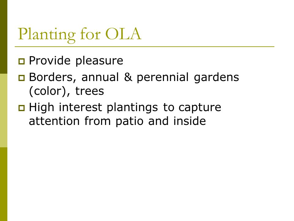 Planting for OLA Provide pleasure