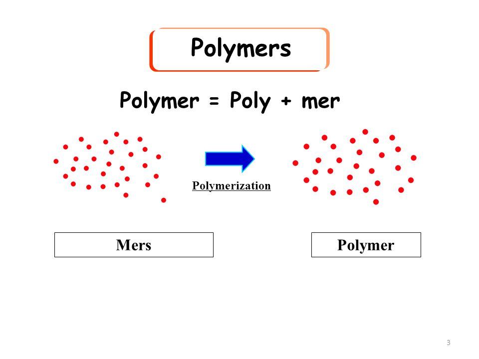 Polymers Polymer = Poly + mer Polymerization Mers Polymer
