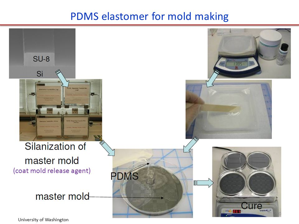 PDMS elastomer for mold making