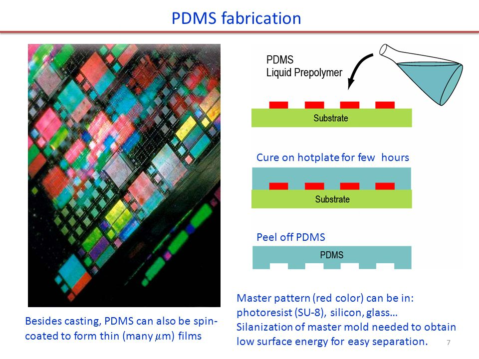PDMS fabrication Cure on hotplate for few hours Peel off PDMS