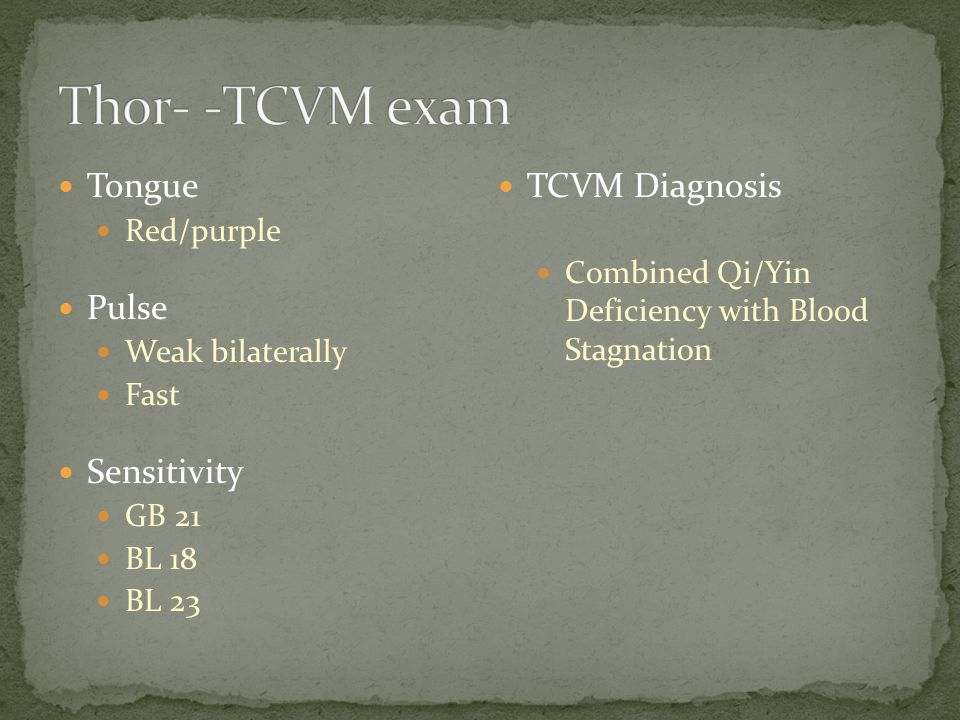Thor- -TCVM exam Tongue Pulse Sensitivity TCVM Diagnosis Red/purple