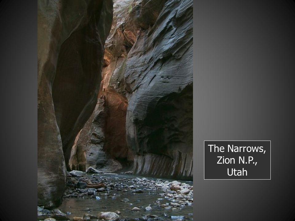 The Narrows, Zion N.P., Utah
