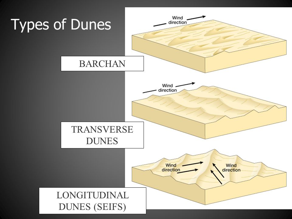 LONGITUDINAL DUNES (SEIFS)