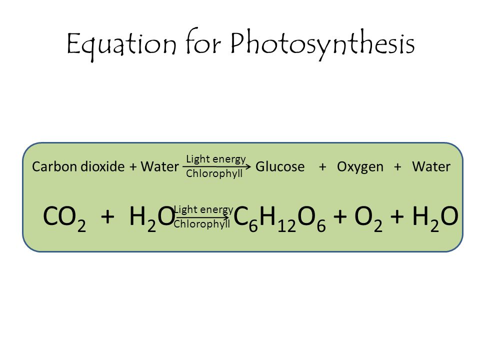 Chemical equation for photosythesis