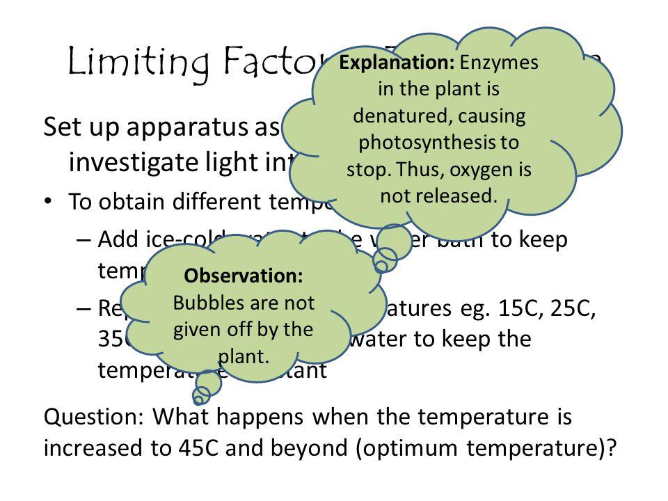 Limiting Factors - Temperature