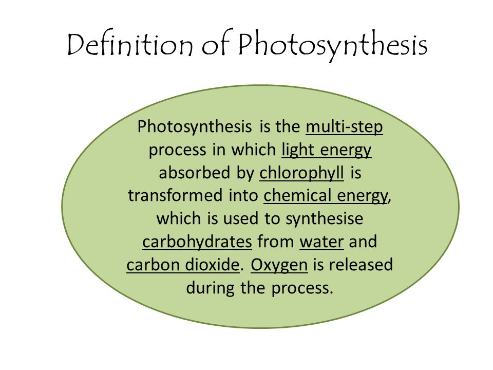 define photosythesis Photosynthesis - the cycle of plants and how they make energy the sun(light energy), water, minerals and carbon dioxide are all absorbed by the plant.