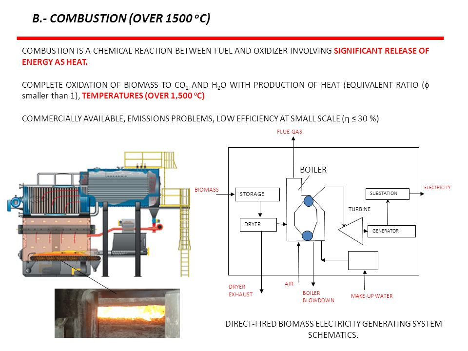 DIRECT-FIRED BIOMASS ELECTRICITY GENERATING SYSTEM SCHEMATICS.
