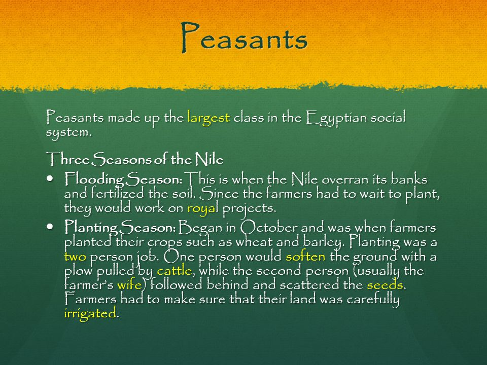 Peasants Peasants made up the largest class in the Egyptian social system. Three Seasons of the Nile.
