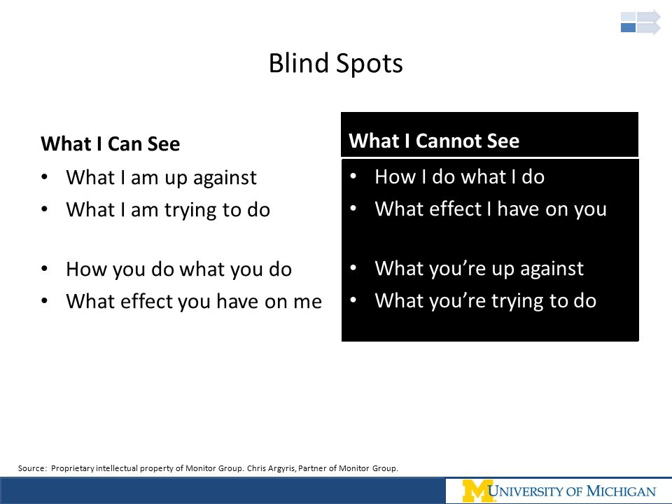 Blind Spots What I Can See What I Cannot See What I am up against