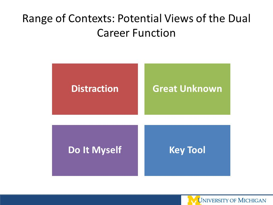 Range of Contexts: Potential Views of the Dual Career Function