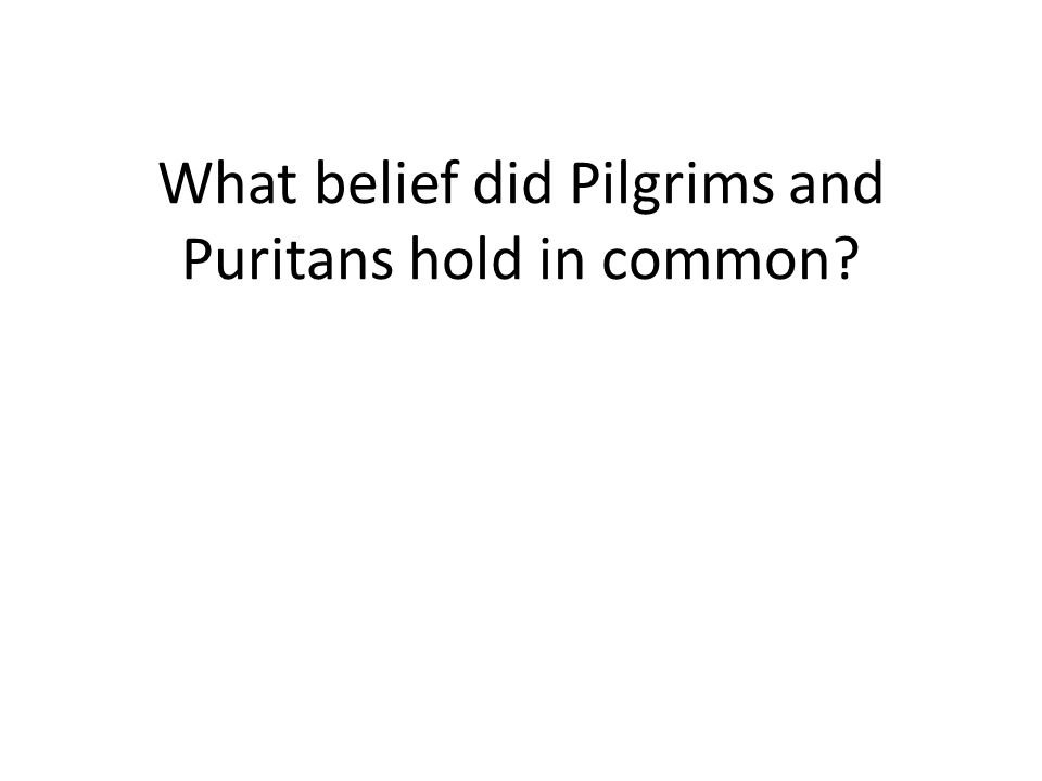 What belief did Pilgrims and Puritans hold in common