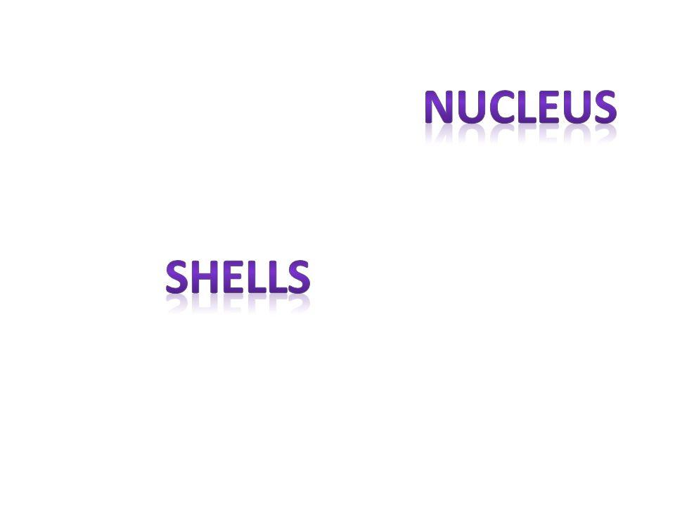 nucleus shells
