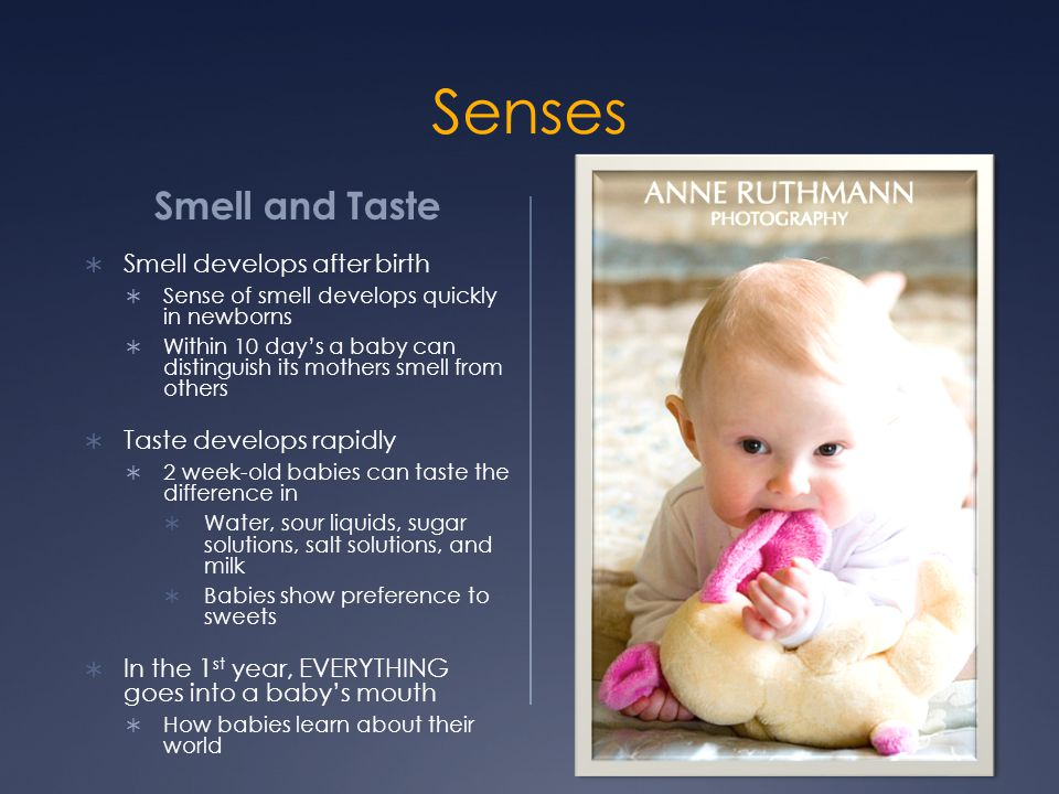 Senses Smell and Taste Smell develops after birth