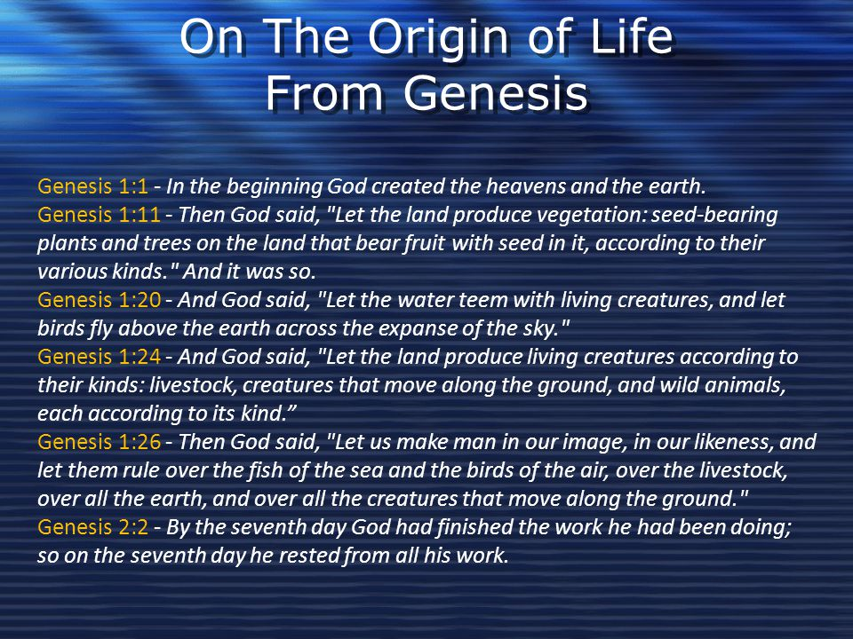 On The Origin of Life From Genesis