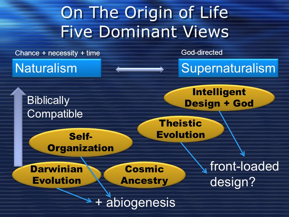 On The Origin of Life Five Dominant Views