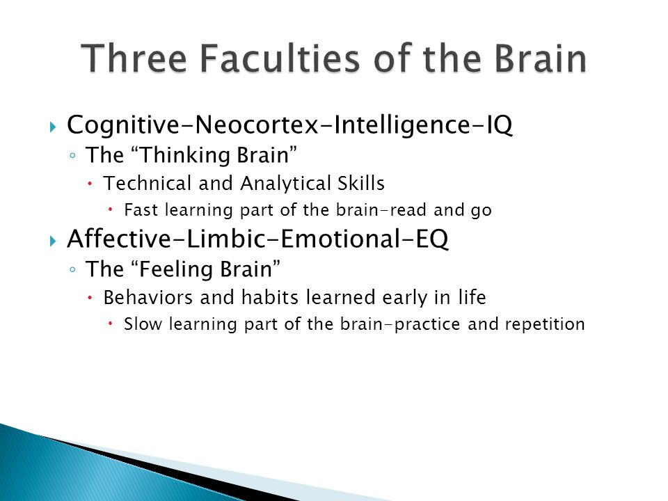 Three Faculties of the Brain