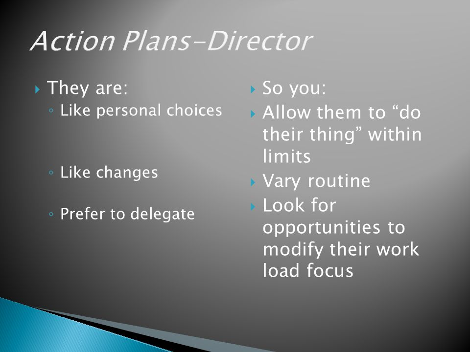 Action Plans-Director