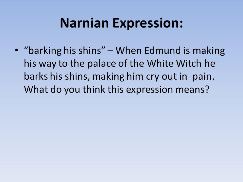 Narnian Expression: