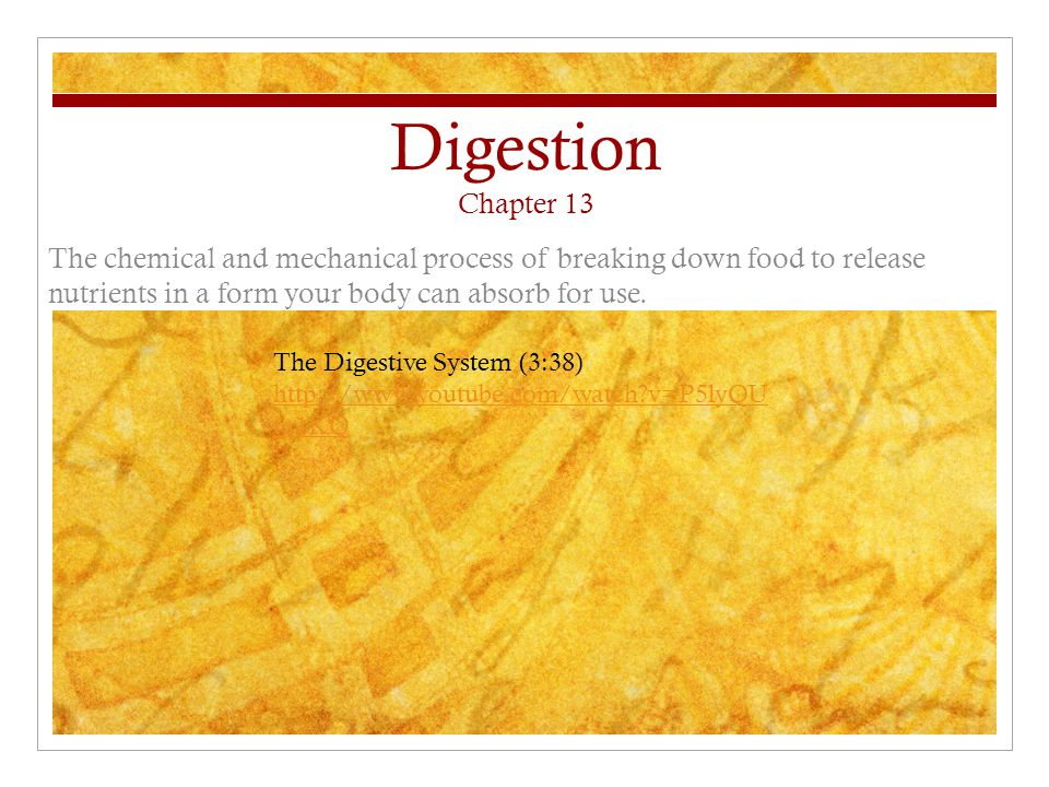 Digestion Chapter 13 The chemical and mechanical process of breaking down food to release nutrients in a form your body can absorb for use.