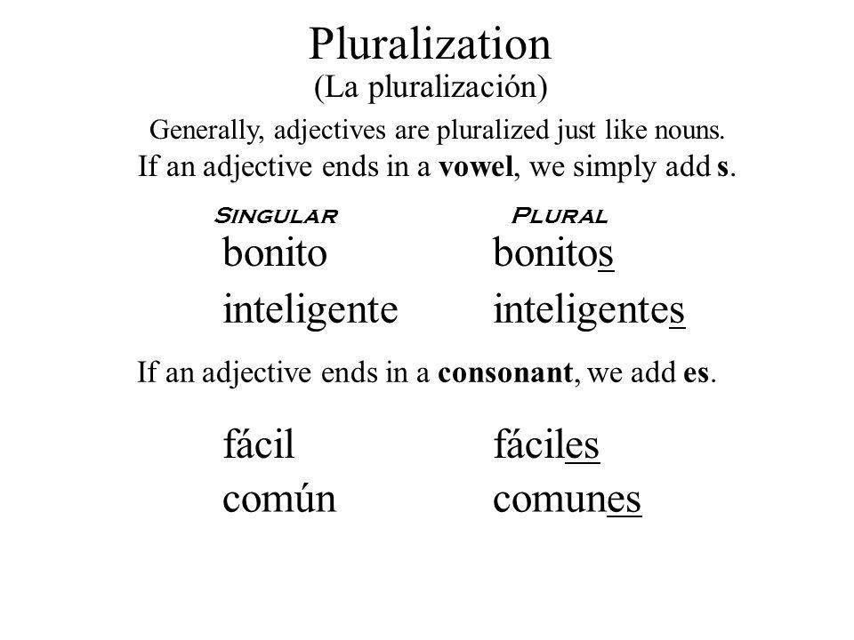 Pluralization bonito bonitos inteligente inteligentes fácil fáciles
