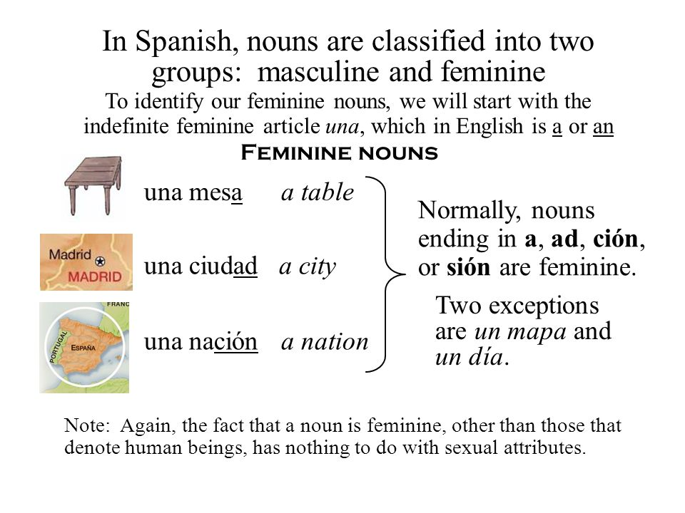 In Spanish, nouns are classified into two groups: masculine and feminine