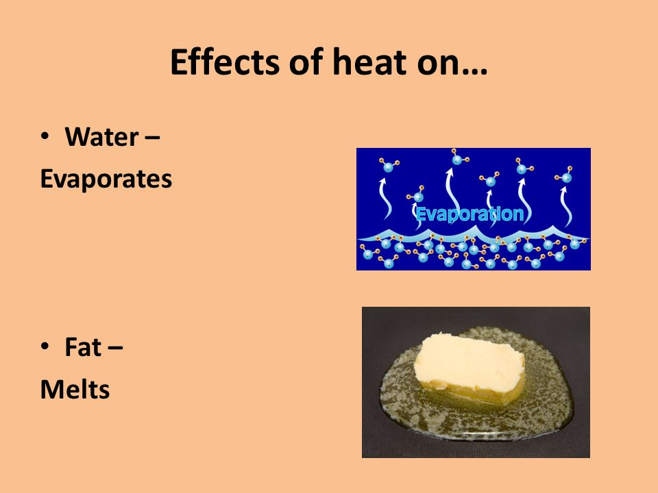 Effects of heat on… Water – Evaporates Fat – Melts