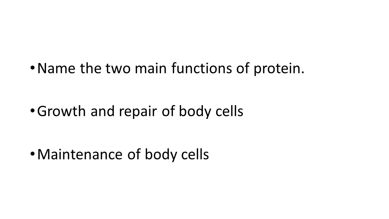 Name the two main functions of protein.