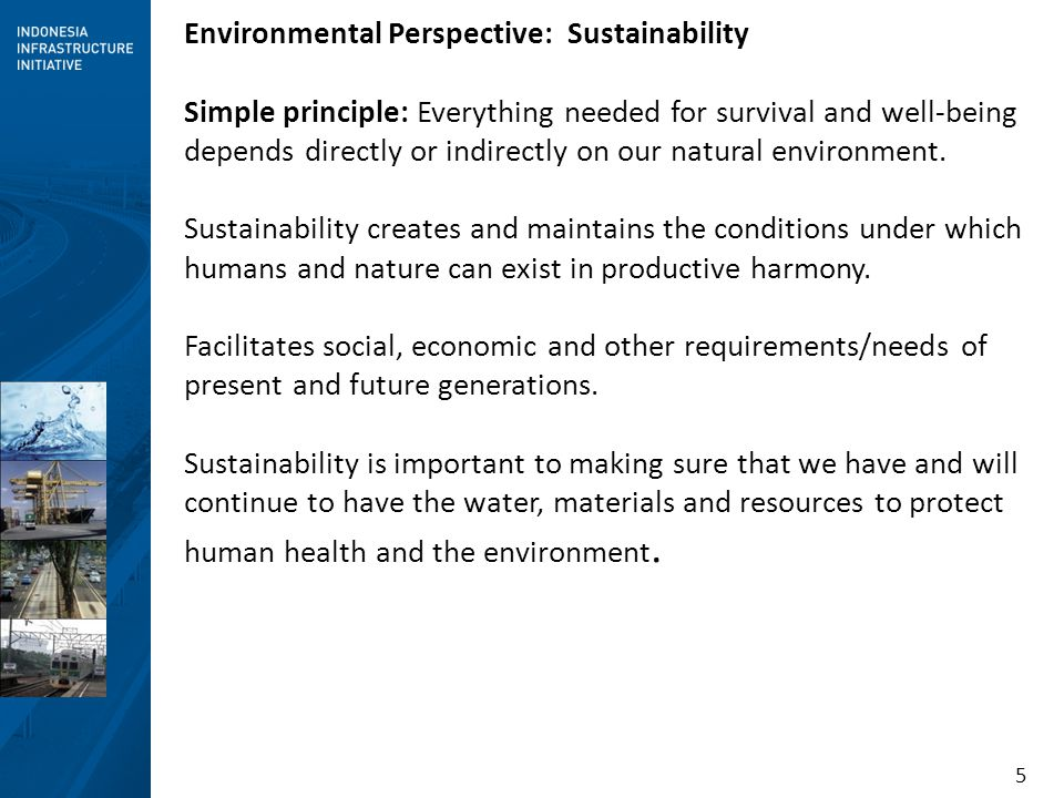 Environmental Perspective: Sustainability