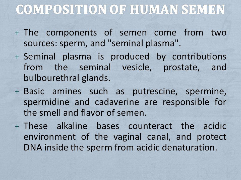 Composition of human semen
