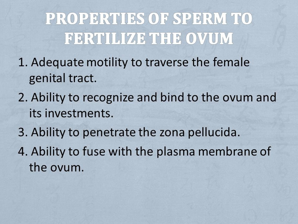 Properties of sperm to fertilize the ovum