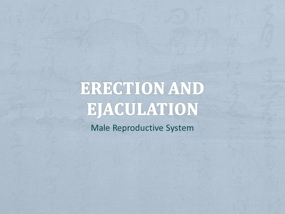 ERECTION AND EJACULATION