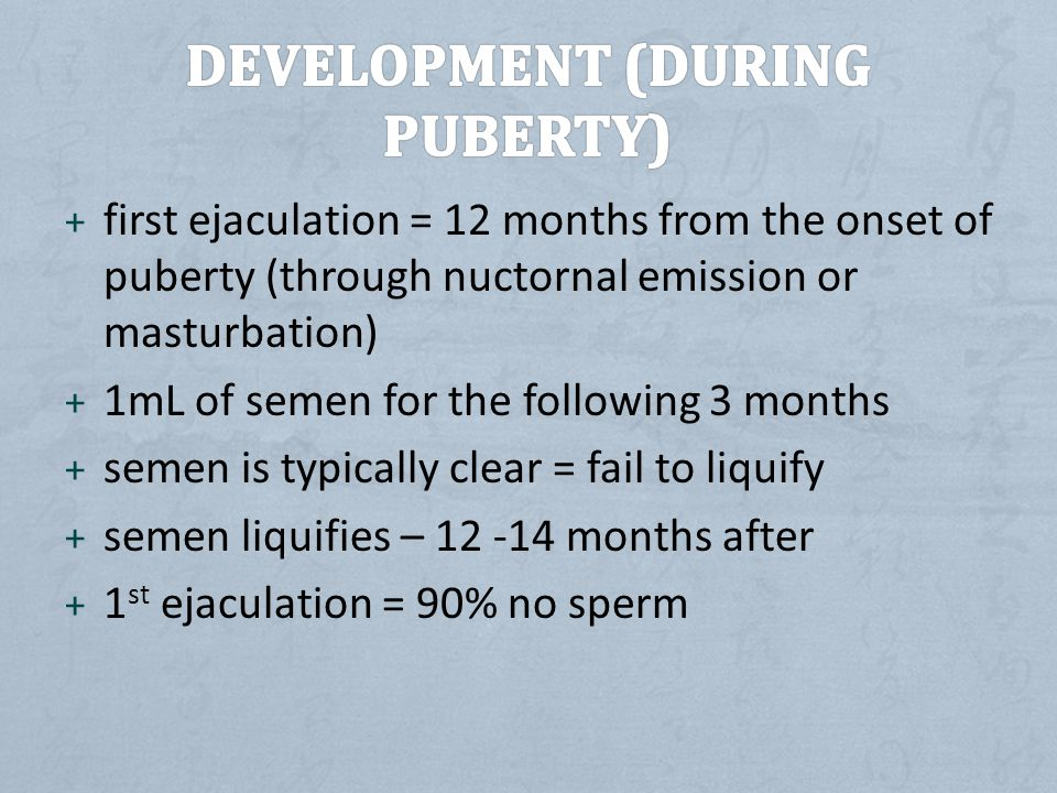 Development (During puberty)
