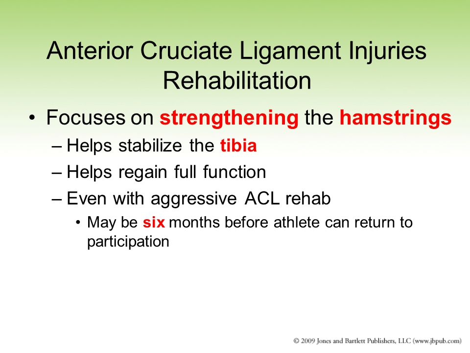 Anterior Cruciate Ligament Injuries Rehabilitation