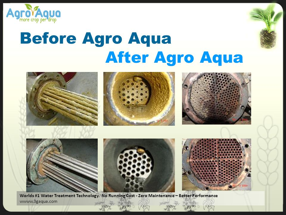 Before Agro Aqua After Agro Aqua
