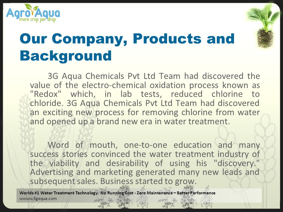 Our Company, Products and Background