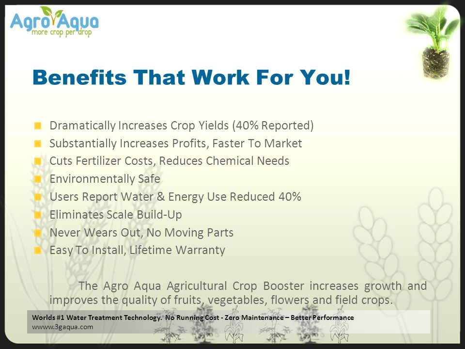 Benefits That Work For You!