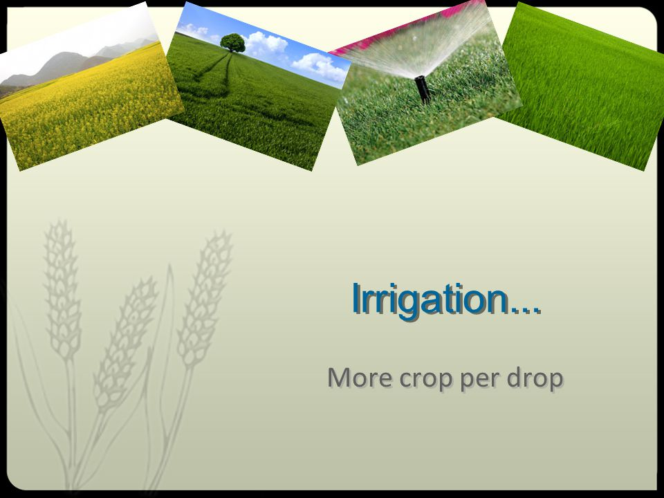 Irrigation... More crop per drop