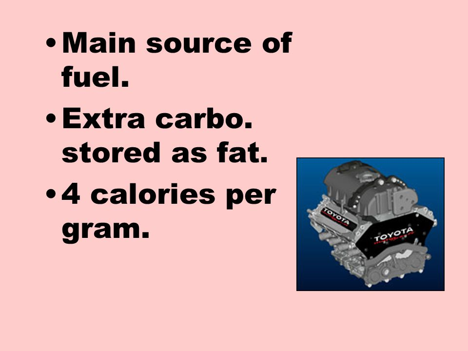 Main source of fuel. Extra carbo. stored as fat. 4 calories per gram.