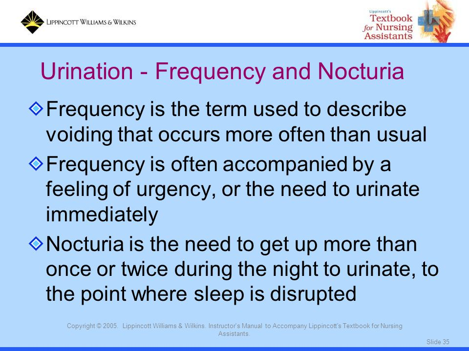 Urination - Frequency and Nocturia