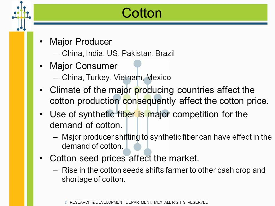 Cotton Major Producer Major Consumer