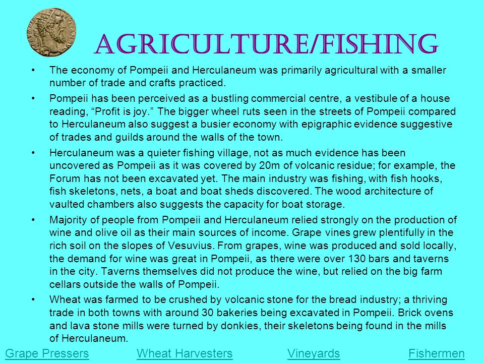 Agriculture/Fishing The economy of Pompeii and Herculaneum was primarily agricultural with a smaller number of trade and crafts practiced.