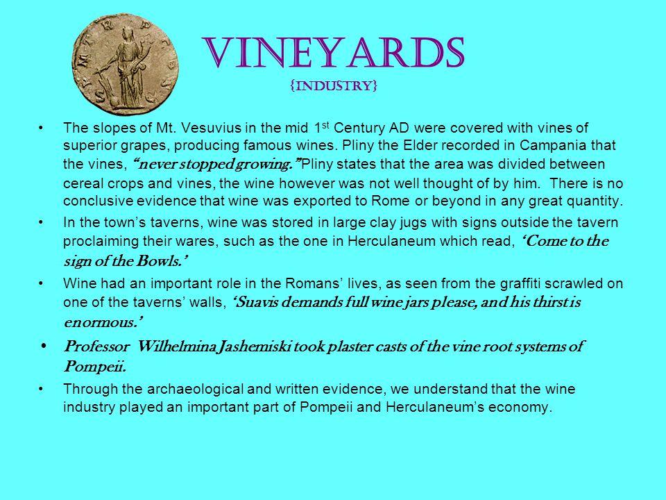 Vineyards {Industry}