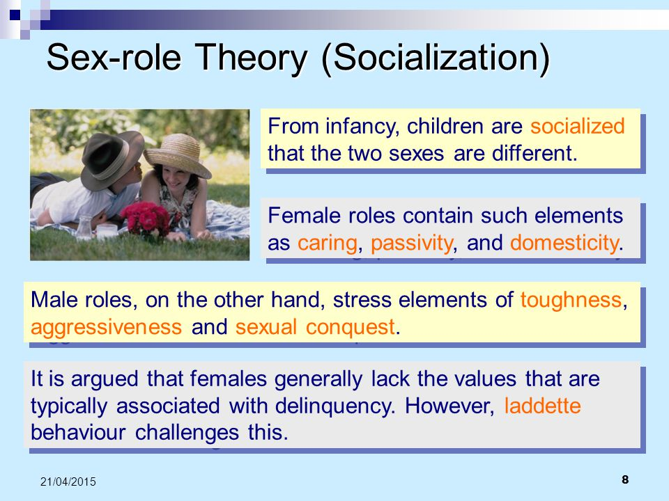 Sex-role Theory (Socialization)