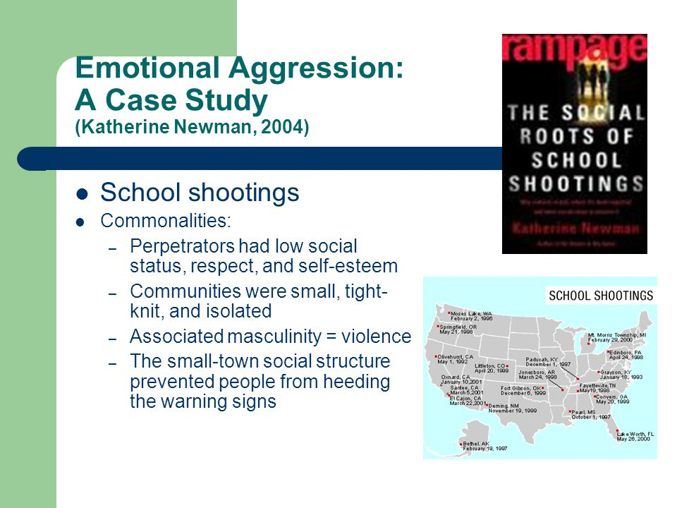 Emotional Aggression: A Case Study (Katherine Newman, 2004)