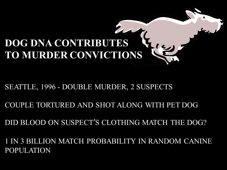 DOG DNA CONTRIBUTES TO MURDER CONVICTIONS