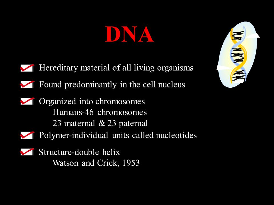 DNA Hereditary material of all living organisms