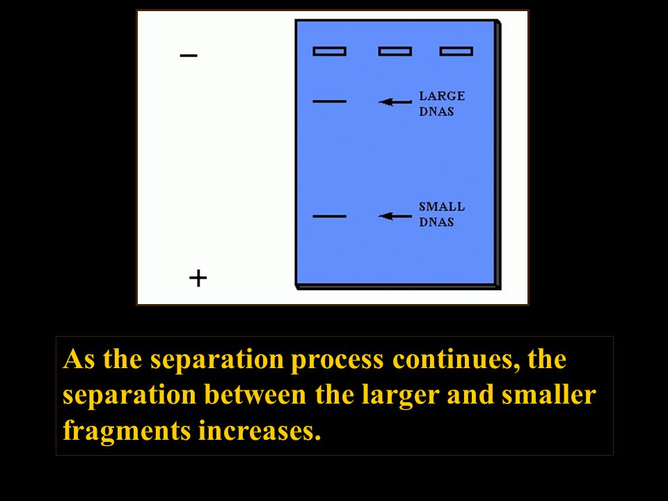 As the separation process continues, the separation between the larger and smaller fragments increases.